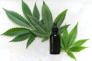 CBD Tropfen mit Cannabis Blättern